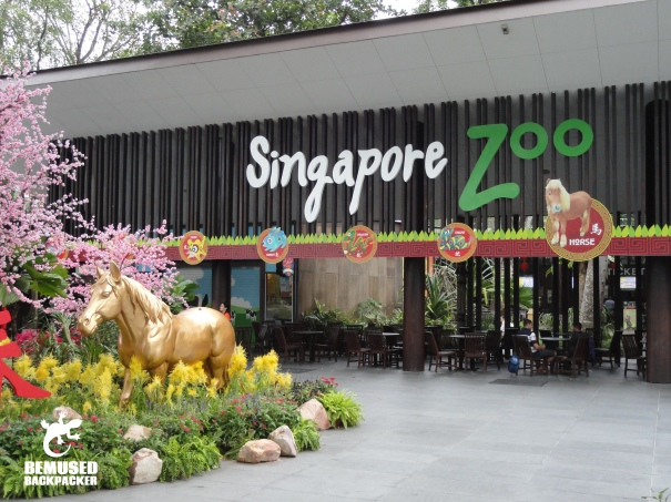 Singapore Zoo Things to do in Singapore