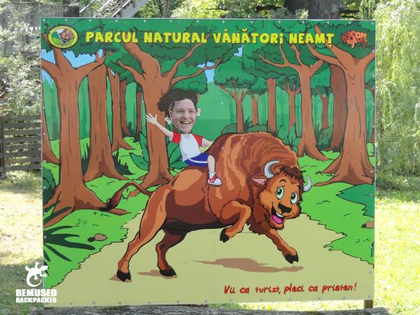 Piatra Neamt Romania Dragos Voda Bison Reserve