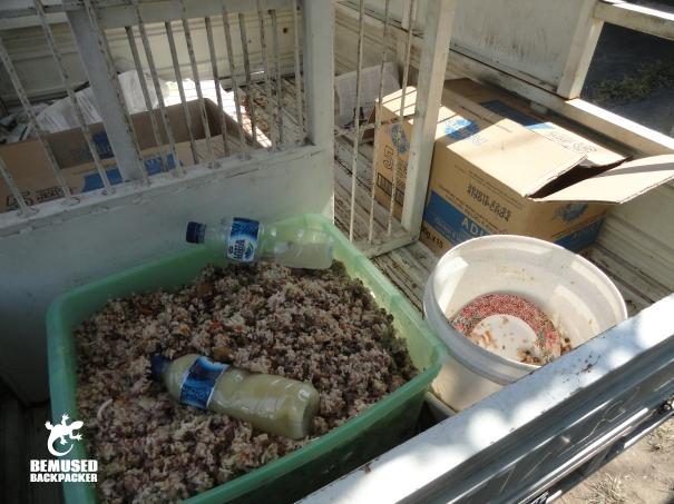 BAWA BALI dog food