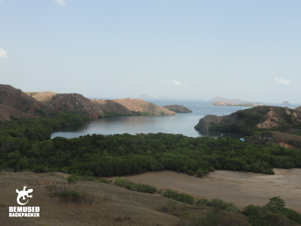 Rinca Island Komodo National Park Indonesia