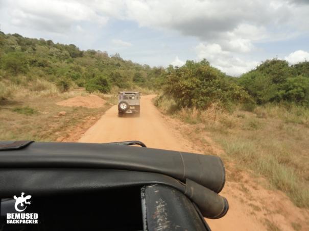 Elephant Safari Jeep Safari Elephant Safari Minneriya National Park Sri Lanka