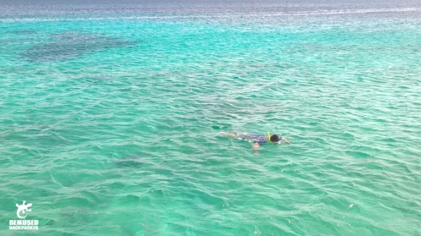 Michael Huxley Adventure Travel Snorkeling Aruba