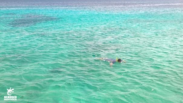 Michael Huxley Adventure Travel Snorkeling Aruba