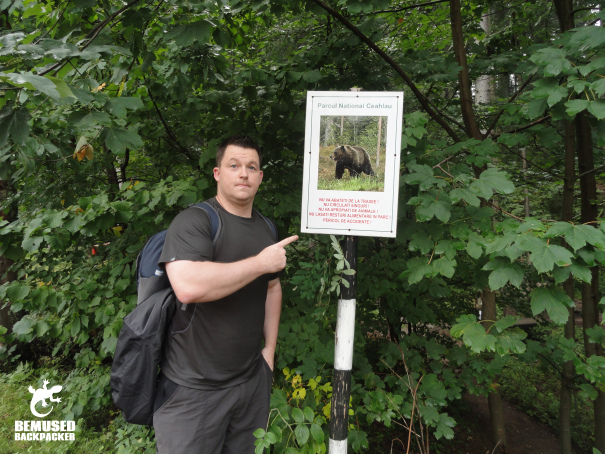 Michael Huxley Bear Spotting in Romania