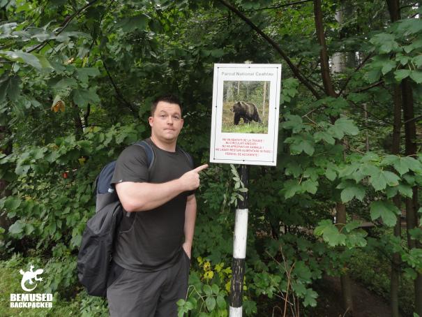 Michael Huxley Bear Spotting in Romania