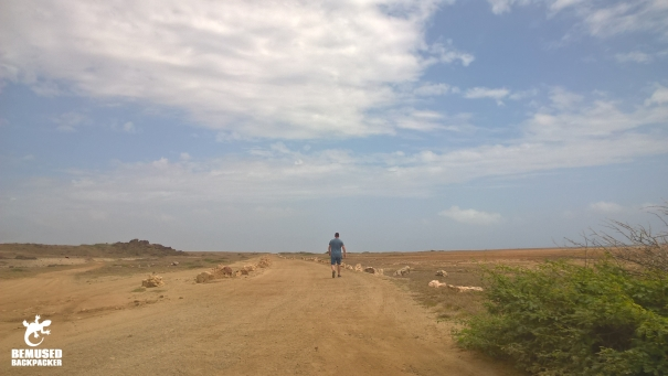 Michael Huxley walking Aruba desert