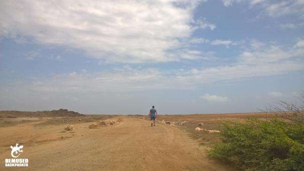 Michael Huxley walking Aruba desert