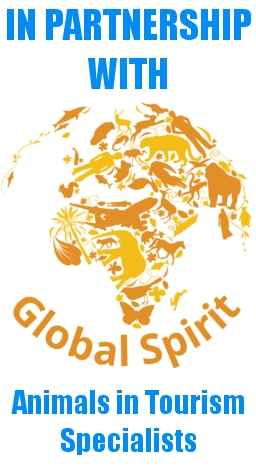Global Spirit Partnership Badge