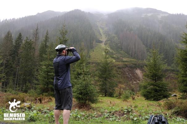 Michael Huxley Slovakia Bear Watching