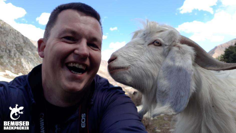 Michael Huxley Sangla Valley Goat Himalayas