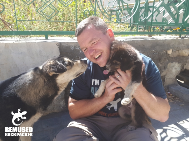 Michael Huxley with dogs Himalaya Road Trip